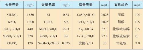 MS固体培养基成分配方