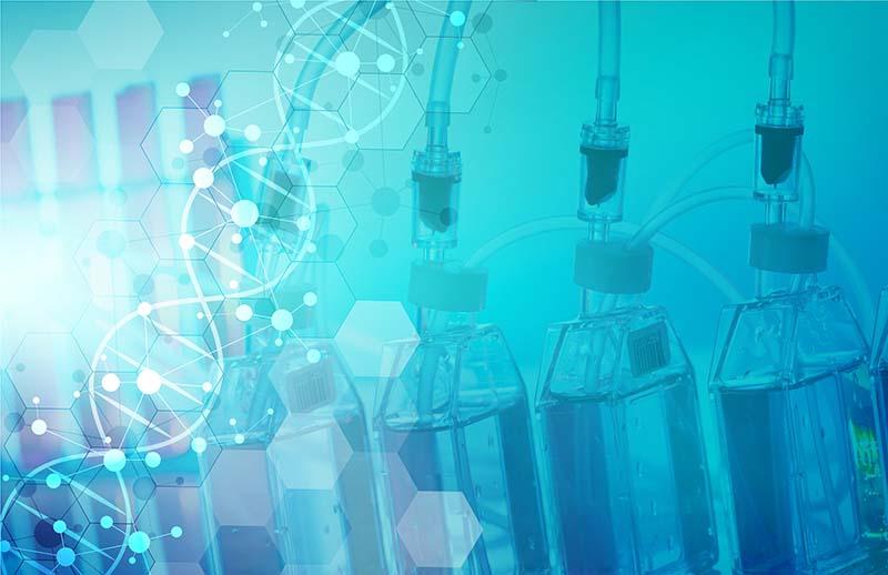 什么是培养基?培养基分为哪三大类?