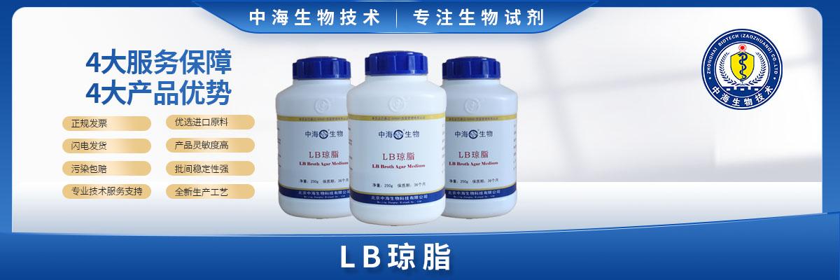 LB琼脂培养基