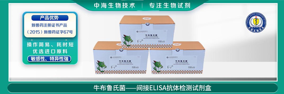 牛布鲁氏菌间接ELISA抗体检测试剂盒