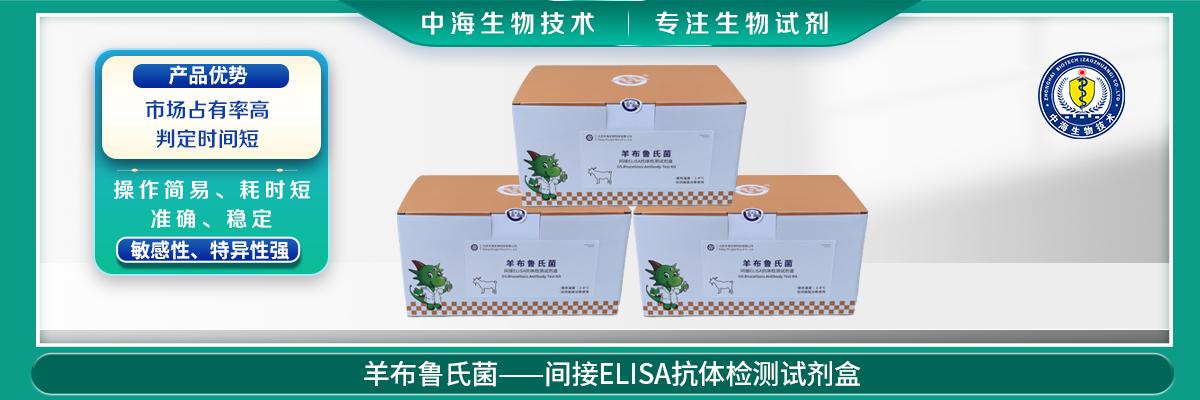 羊布鲁氏菌间接ELISA抗体检测试剂盒